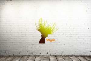 Case Stigas