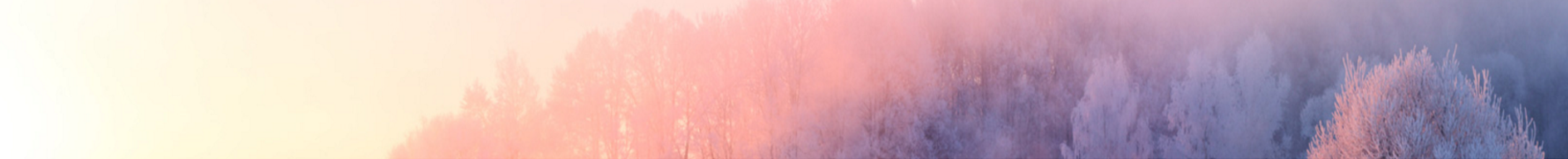 winterupdate
